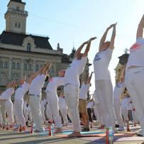 Aktivnosti Joga saveza Srbije u 2014. godini