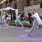 Art Yoga Similiris – Ulici srećnih misli, 2013.