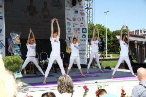 Joga savez Srbije art joga